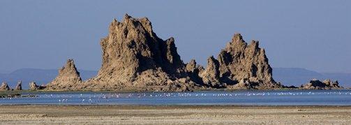 http://www.afdb.org/fileadmin/_migrated/pics/Djibouti-503x179.jpg