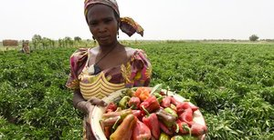 Lady in a field in Nigeria