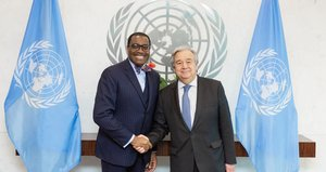 UN Secretary General, African Development Bank President agree to strengthen ties and push development agenda in Africa