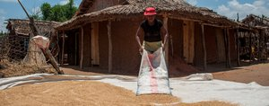 African Development Bank investments transform Madagascar's key rice regions
