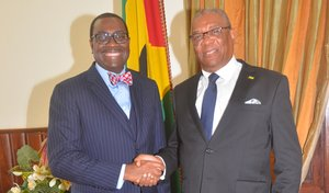 We have high hopes and expectations for your country, Adesina tells President of São Tomé and Príncipe
