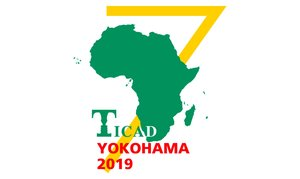 Japan: Pre-TICAD7 Seminar - Financing for Project Implementation and Infrastructure and Energy Investment Opportunities in Africa