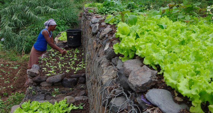 Water project in Cabo Verde saves communities, transforms livelihoods of women