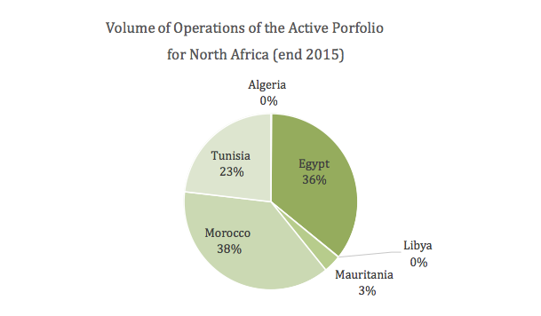graph showing the Volume of Operations of the Active Portfolio for North Africa (end 2015)