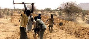 Farming in Mauritania