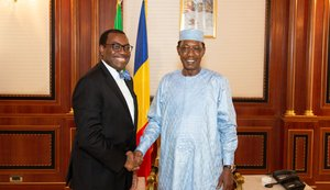 Chad: African Development Bank President pledges deeper cooperation, urges donor support for energy sector