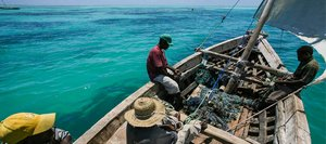 AfDB encourages transparent governance of fisheries through the FiTI