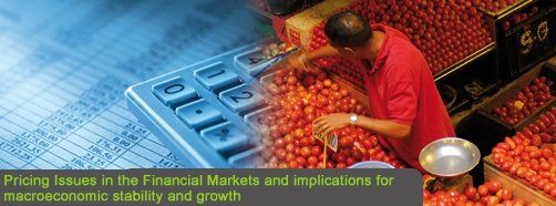 Pricing Issues in the Financial Markets and implications for macroeconomic stability and growth