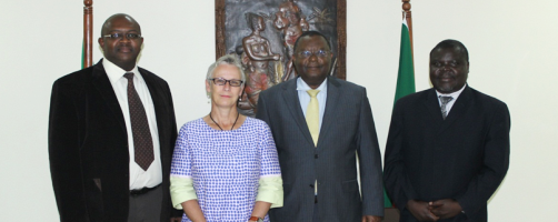 AfDB strengthens cooperation with Nordic Development Fund in climate change initiatives