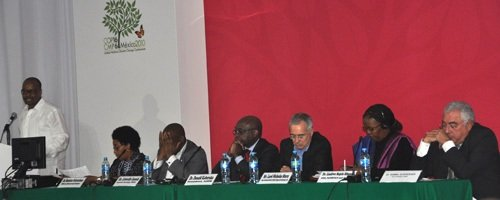 African Leaders call for the Africa Green Fund