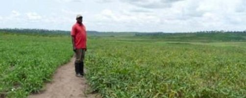PARSAR aims to strengthen food security and cut poverty in the DRC
