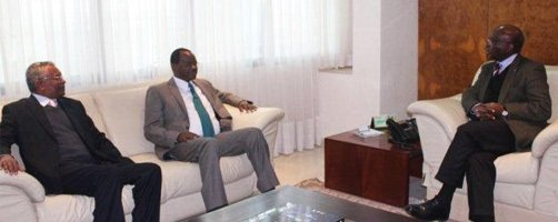 AfDB to Champion Upcoming Donor Conference for Darfur in Doha