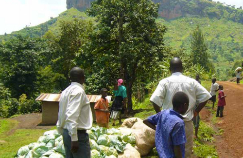 Uganda Community Agricultural Infrastructure Improvement Programme