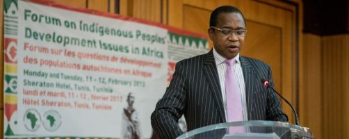 African Development Bank Hosts Forum on Indigenous Peoples' Development