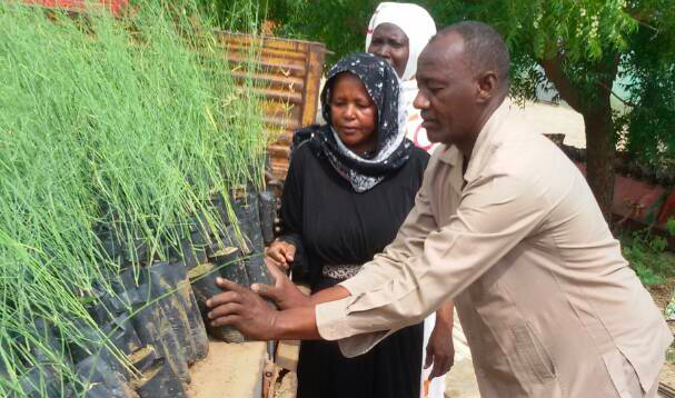 Sudan Sustainable Natural Resources Management Project