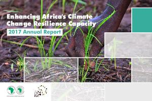 ACCF Annual Report 2017