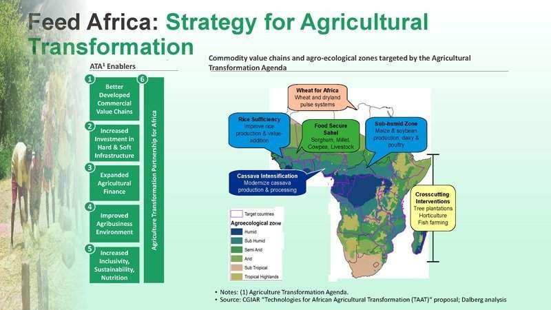 Feed Africa | African Development Bank - Building today, a better