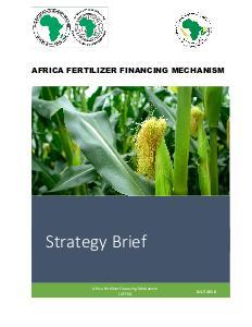 AFFM Strategy Brief - 2018