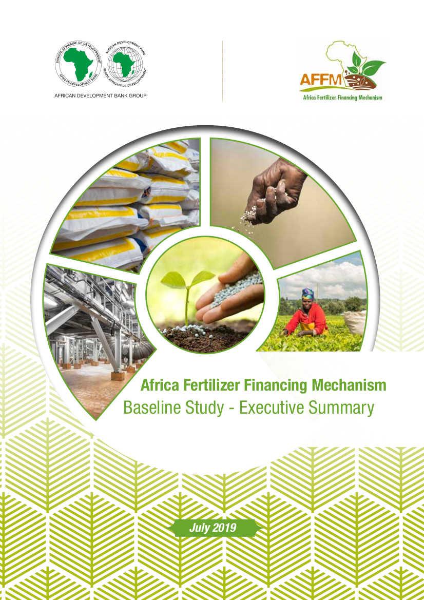 AFFM Baseline Study - Executive Summary
