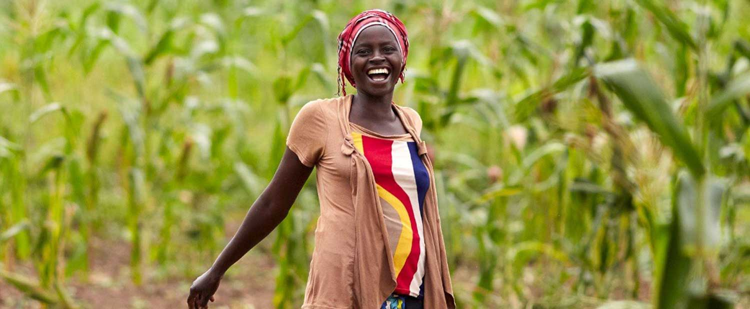 World Food Day 2020 : Banking on agriculture